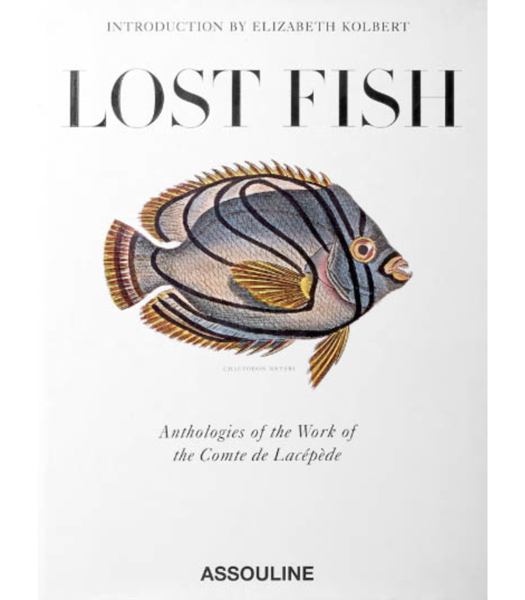 ASSOULINE Lost Fish in N/A